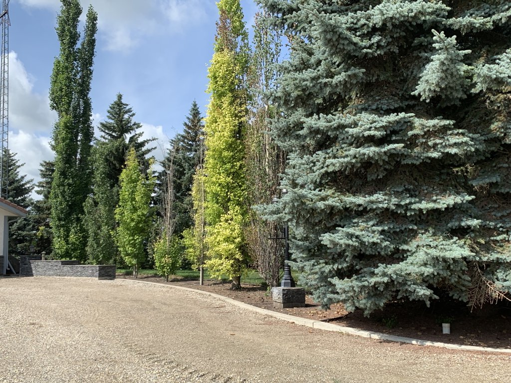 Exclusive #1101930 -  in  Innisfail,  Open Houses